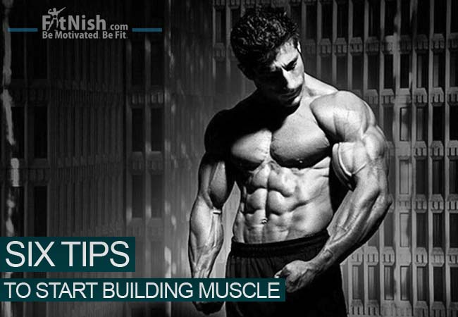 6 Tips To Start Building Muscle