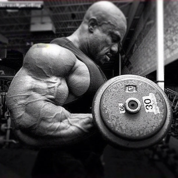 Phil Heath training Arms