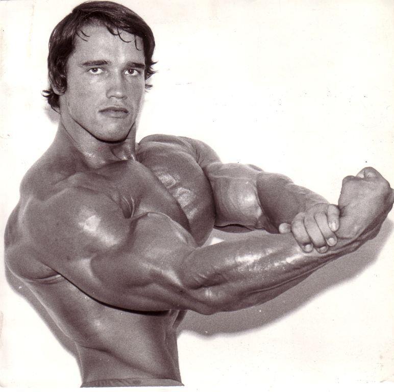 Arnold-Schwarzenegger posing7