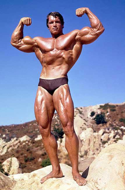 Arnold-Schwarzenegger posing5