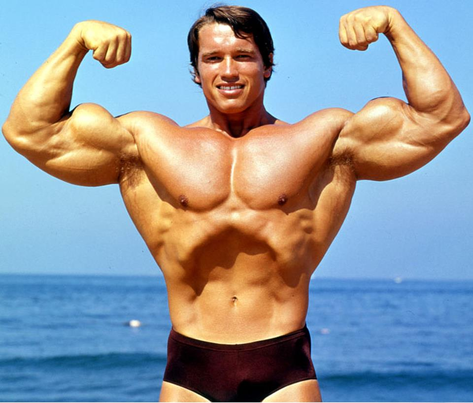 The Best Of Arnold Schwarzenegger | His Rules To Success