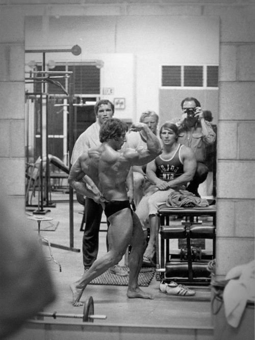 frank zane focus on posing