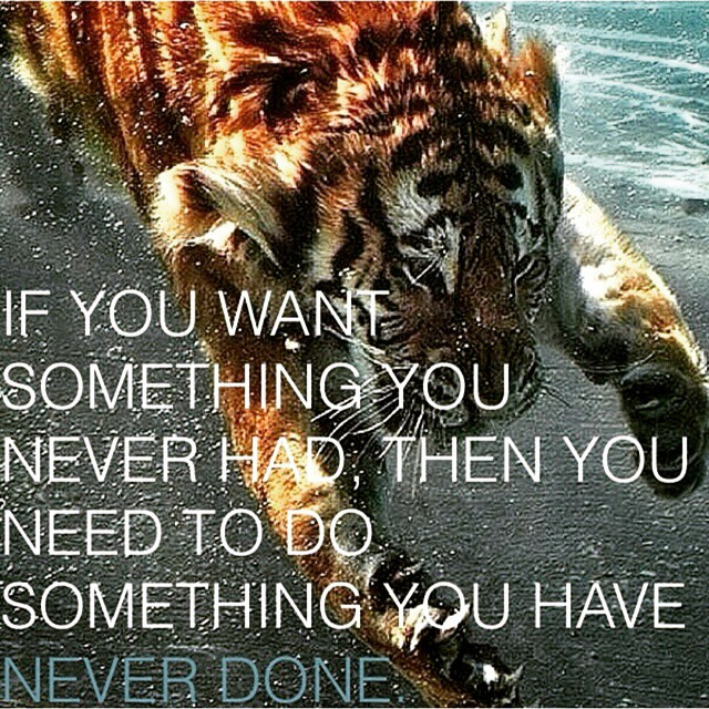 Find a way. ??? #love #behappy #bepositive  #spreadpositivity #noexcuses #begreat  #nevergiveup #work #workyourassoff  #motivation #BEMOTIVATED #gymmotivation #rippedphysique #quotes #quote #succeed #success  #fitness #bestrong #stopworrying #fitguys #tiger #tigerquote #fitness