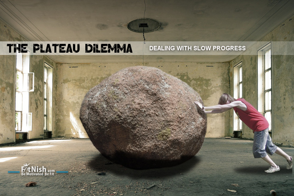 The Plateau Dilemma, Is Slow Progress, Progress? mirror gym