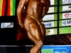 all-africa-olympia-2012-over-90kgs-14