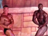 h-and-h-2013-bodybuilding-and-fitness-classic-overall-03