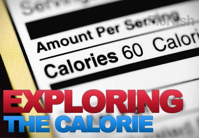What Defines a Calorie