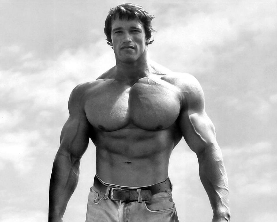 Arnold-Schwarzenegger posing10