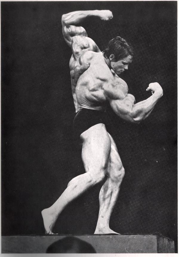 Arnold-Schwarzenegger posing4