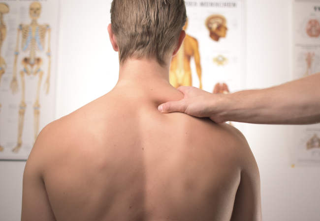 back pain muscle